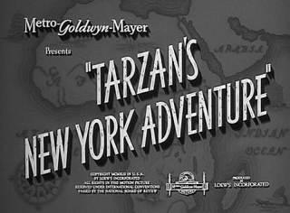 Tarzan's NewYork Adventure